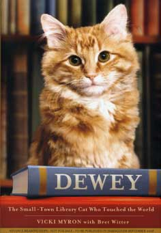 讀後感 Dewey: The Small-Town Library Cat Who Touched the World